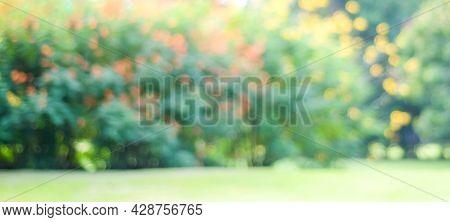 Blurred Garden In Spring Nature Outdoor Background, Blur Green Tree Park In Summer Background, Banne