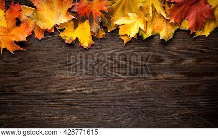 Autumn leaf on wood black background orange lush on old grunge wood deck, copy place, top view