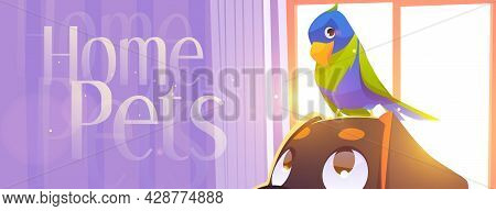 Home Pets Cartoon Banner With Parrot Sitting On Dog Head Front Of Wide Curtained Window At Domestic