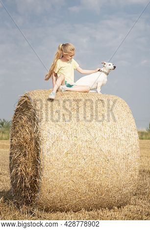 Little Girl And Dog Having Fun In A Wheat Field On A Summer Day.