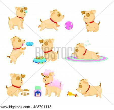 Happy Puppy Daily Routine Cartoon Illustrations Set. Collection Of Little Dog Activities During Day,