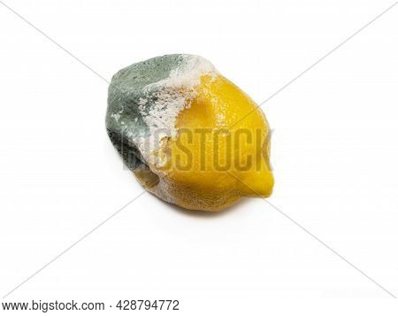 One Rotten, Half-decomposed, Limp, Green-and-white Moldy Fruit On A White Background. The Concept Of