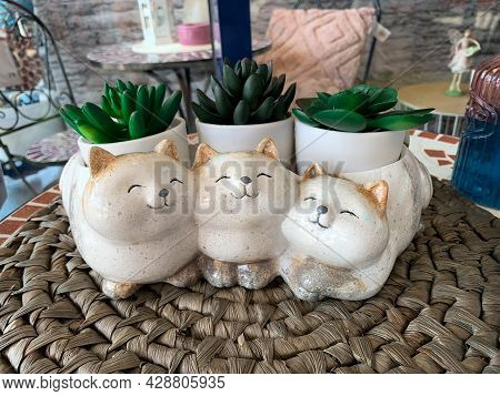 Cute Cat Animal Planter Pot For Succulents. Ceramic Cat Planter. Flower Pot With Three Cats And Mini