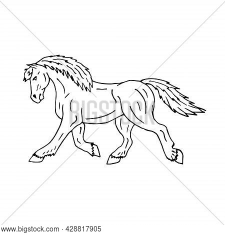 Vector Hand Drawn Doodle Sketch Draft Horse Isolated On White Background