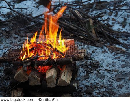 Bonfire In The Winter Forest.