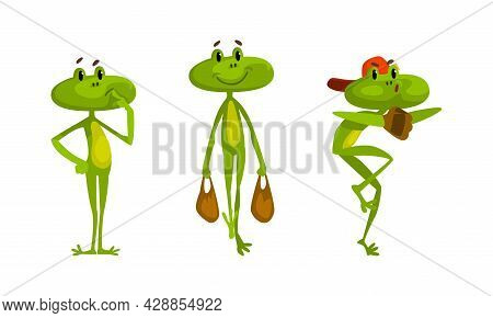 Funny Green Frog With Protruding Eyes Carrying Shopping Bag And Playing Baseball Vector Set