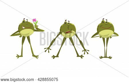 Funny Green Frog With Protruding Eyes Standing With Hands On Hips And Holding Flower Vector Set