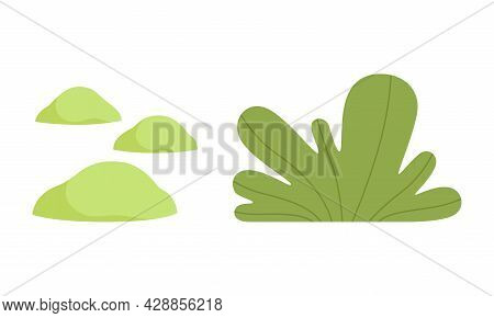 Simple Green Flora And Botany As Landscape And Environment Element Vector Set