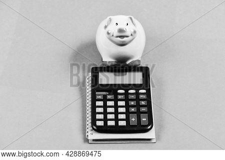 Family Budget Management. Business Start Up. Piggy Bank With Calculator. Moneybox. Saving Money. Fir