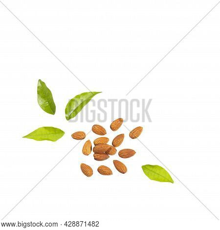 Organic Peeled Almonds In The Wooden Bowl - Prunus Dulcis