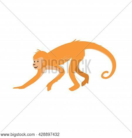 Cute Cartoon Monkey Isolated On White Transparent Background. Vector Flat Design Children Illustrati