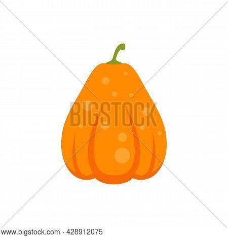 Vegetarian Pumpkin Icon. Flat Illustration Of Vegetarian Pumpkin Vector Icon Isolated On White Backg