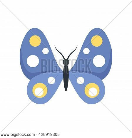 Macro Butterfly Icon. Flat Illustration Of Macro Butterfly Vector Icon Isolated On White Background