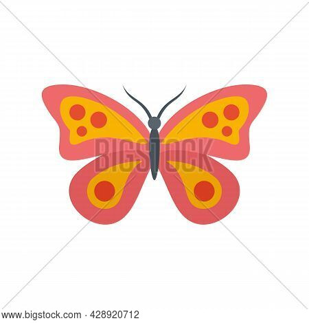 Exotic Butterfly Icon. Flat Illustration Of Exotic Butterfly Vector Icon Isolated On White Backgroun