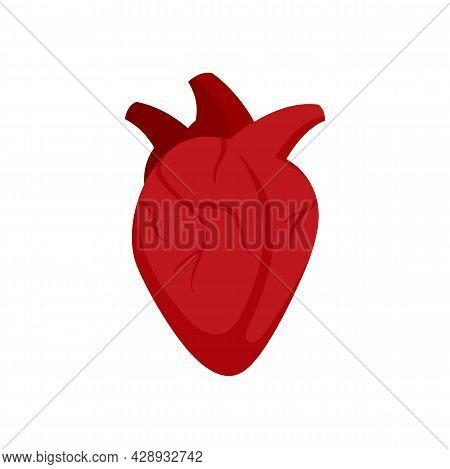 Medical Human Heart Icon. Flat Illustration Of Medical Human Heart Vector Icon Isolated On White Bac