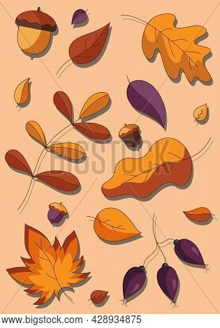 Cartoon Set Of Fallen Autumn Botanical Forest Plants, Various Type Of Coloured Leaves And Acorns. Ve