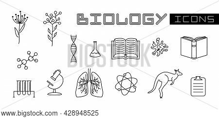 A Set Of Linear Isolated Elements For Biology. Books, Amoeba, Lungs, Molecules, Microscope And Other