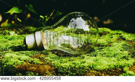 A Fluorescent Light Bulb In Sunlight On Green Nature Background. Green Business, Economy, Eco-indust