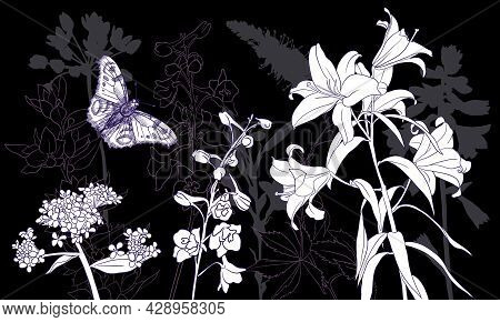 Vector Drawing Natural Background With Flowers And Butterfly At Night, Hand Drawn Illustration For C