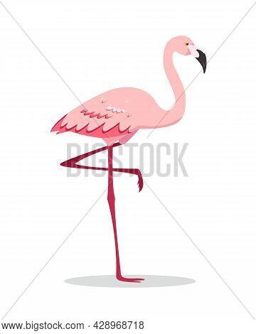 Pink Flamingo Bird Standing On One Leg. Flamingo Icon Isolated On White Background. Flat Or Cartoon