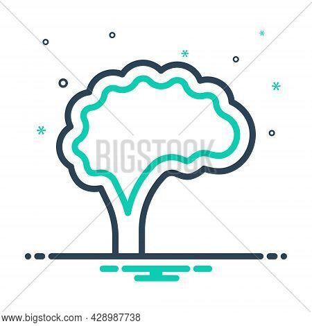 Mix Icon For Brain Intellect Head Cerebrum Neurology Idea Anatomy Intelligence