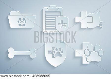 Set Animal Health Insurance, Veterinary Clinic, Dog Bone, , Clinical Record Pet And Medical Veterina