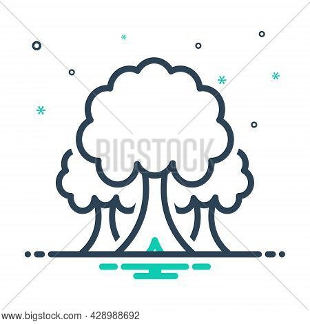 Mix Icon For Tree Plant  Foliage Greenstuff Sapling Seedling Timber Ecology Nature Forest