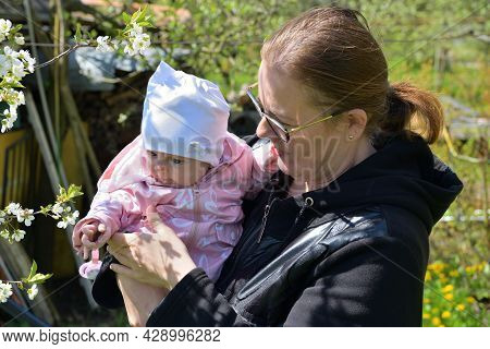 A Young Mother Holds Her Toddler In Her Arms While A Cherry Blossom In Spring