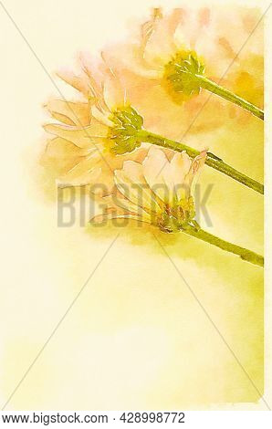 Hand painted water color art illustration. Beautiful classic watercolor painting of flowers on olain background.