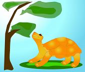 The cheerful turtle with curiosity looks at a tree. poster