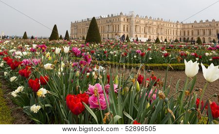 Versailles Gardens And Building Angled