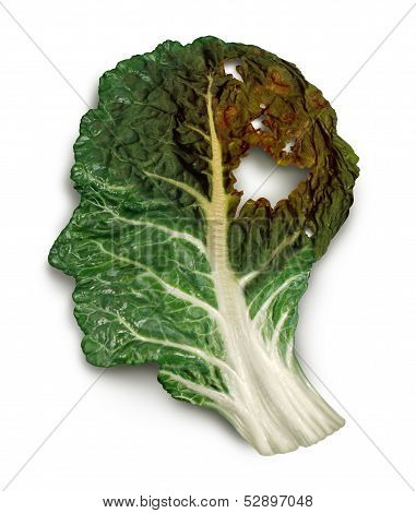Brain decay disease with memory loss due to Dementia and Alzheimer's illness or cancer icon as a medical symbol of a green kale leaf shaped as a human head and neurons degenerating and dading away as a concept of intelligence decline. poster