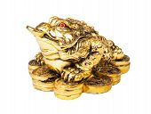 Chinese Feng Shui Frog with coins symbol of money and wealth poster