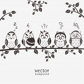 illustration of five silhouette funny emoticon owls sitting on a branch poster