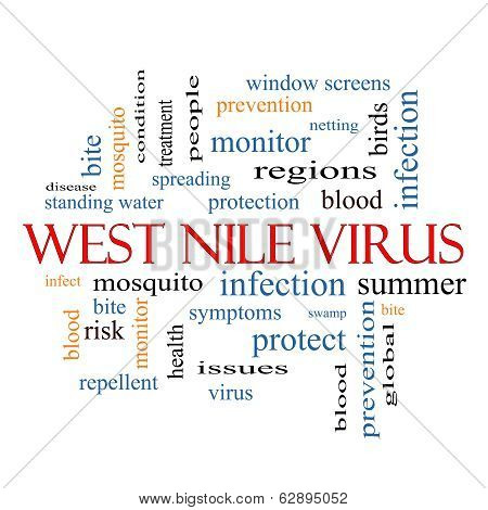 West Nile Virus Word Cloud Concept with great terms such as mosquito bite infection and more. poster