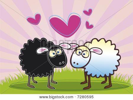 Sheep In Love