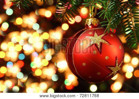 Christmas With The Christmas Tree