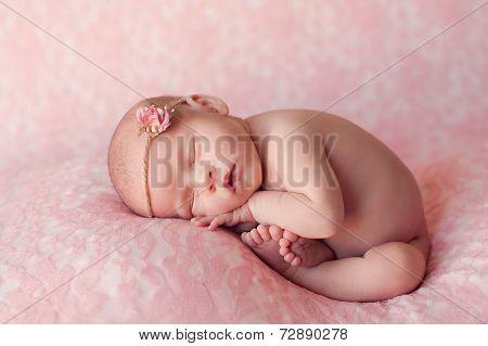 Sleeping Newborn Baby Girl On Pink