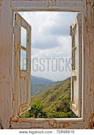 View From An Old White Window