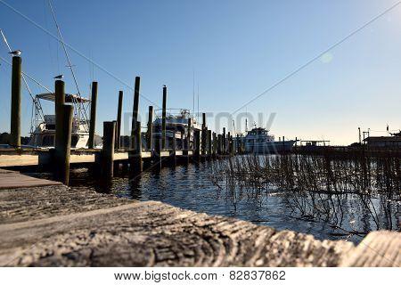 Coastal Docks Loaded with Boats