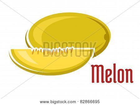 Ripe aroma melon fruit with slice