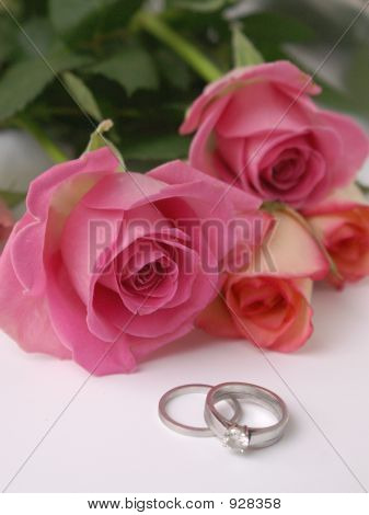 Wedding Roses And Rings