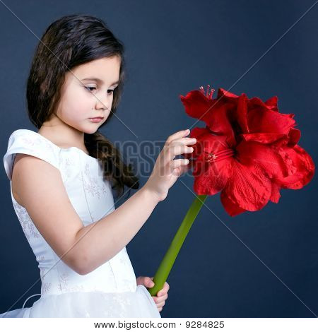 beautiful dreaming girl with bright red flower