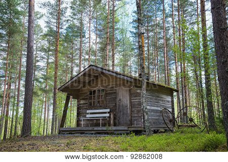 Old Wooden Cabin In The Woods
