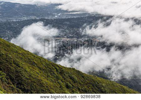 Marin County VII