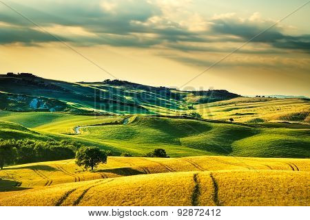 Tuscany Spring, Rolling Hills On Sunset. Volterra Rural Landscape. Green Fields And Trees Italy