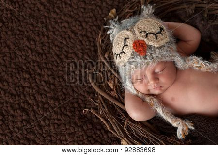 Smiling Newborn Baby Boy Wearing An Owl Hat