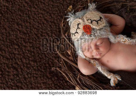 Smiling Newborn Baby Boy Wearing An Owl Hat