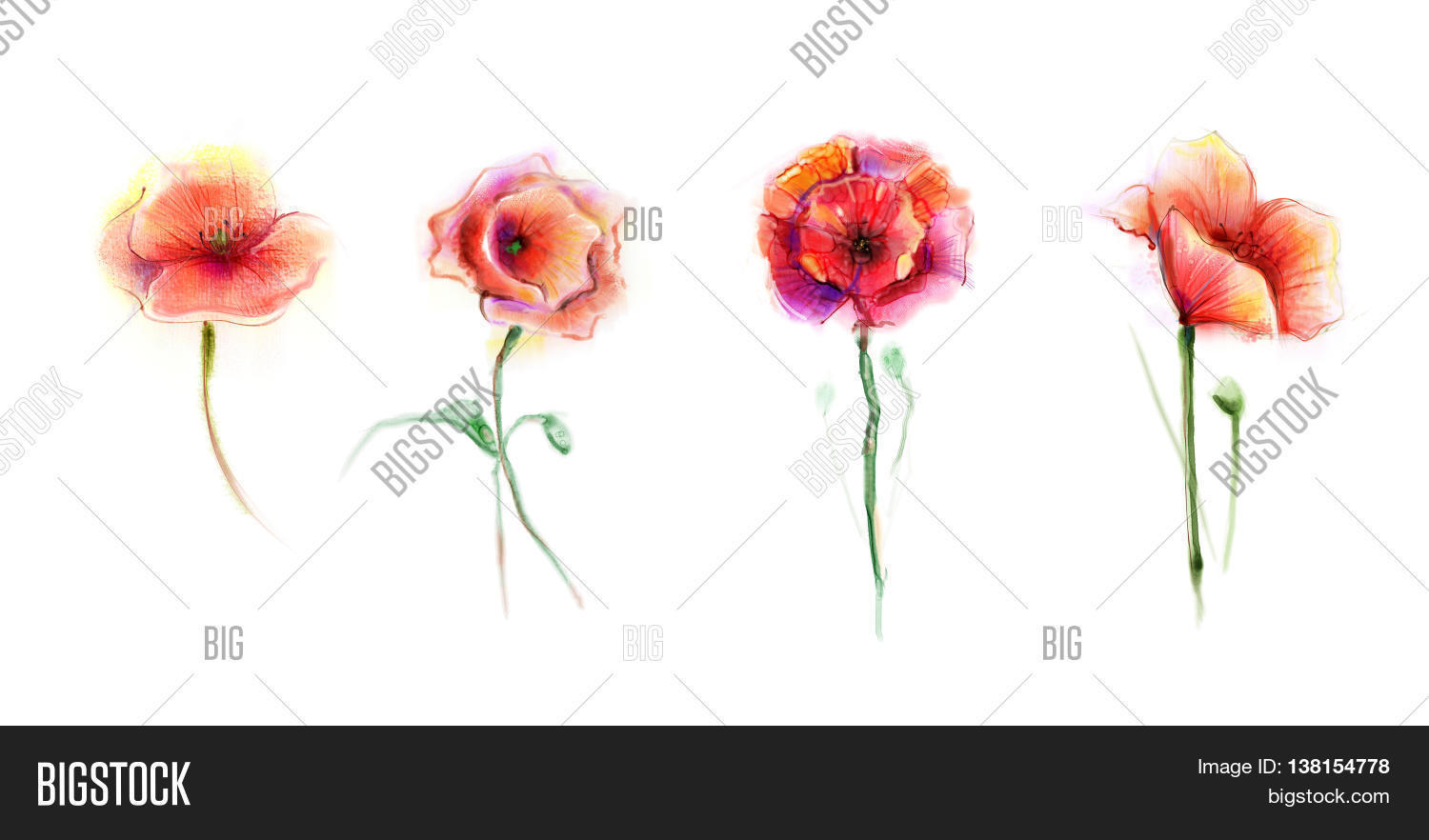 Watercolor painting image photo free trial bigstock watercolor painting poppy flower isolated flowers on white background set of pink and red mightylinksfo