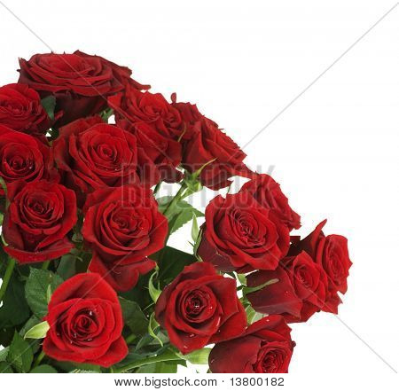 Big Red Roses Bouquet border